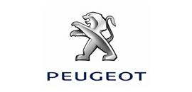 Peugeot - Cliente