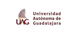 Universidad Autónoma de Guadalajara - Cliente